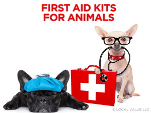 First Aid Kits For Animals
