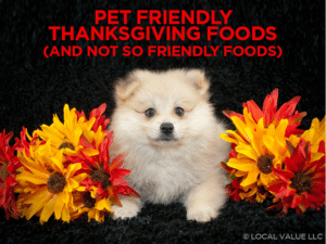 Pet Friendly Thanksgiving Foods